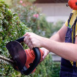 Garden Service in Galway