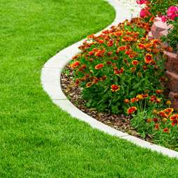 Garden services in Bray
