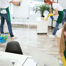 House Cleaning Services in Bray